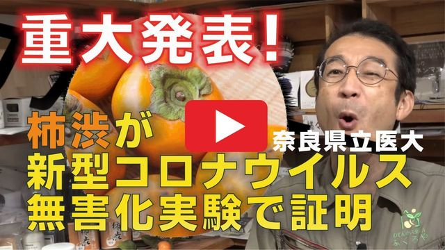 8-柿渋が新型コロナウイルス無害化-2.jpg